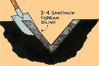sekil2